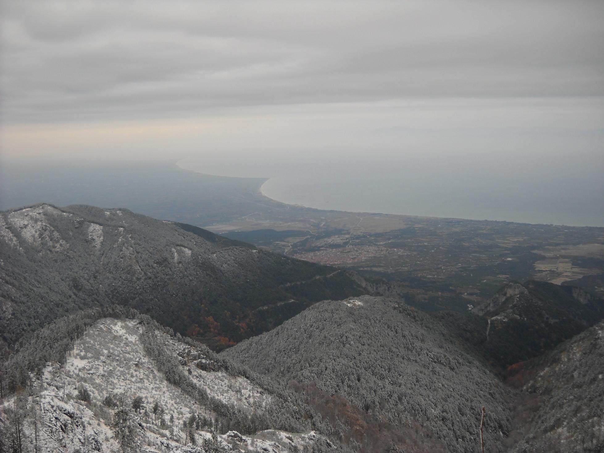 ΔΑΣΟΣ ΜΑΛΤΑΣ 2011